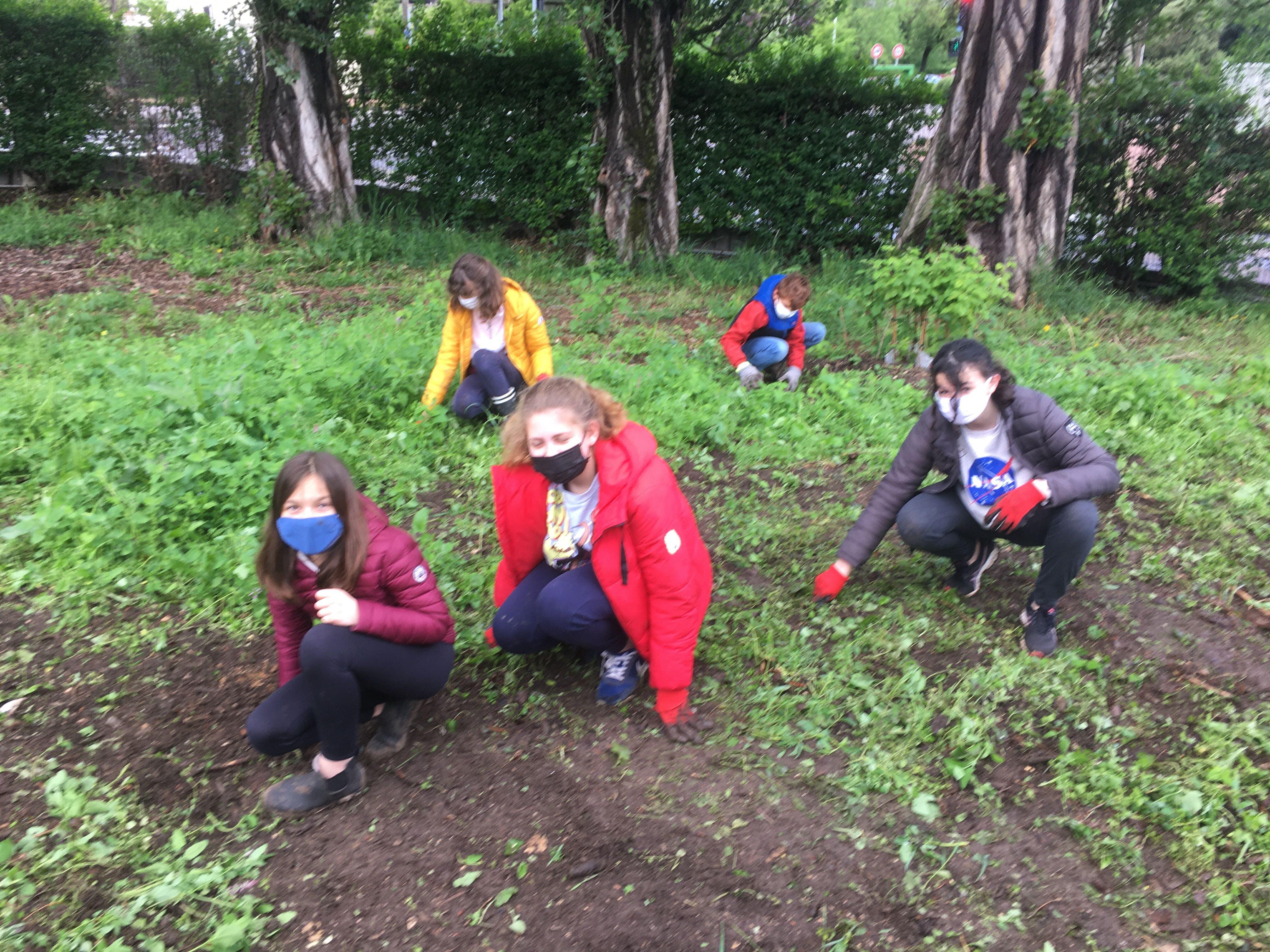 Préparation du sol avant de pouvoir planter.